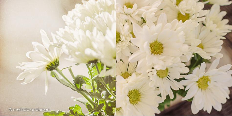 flower_square-2
