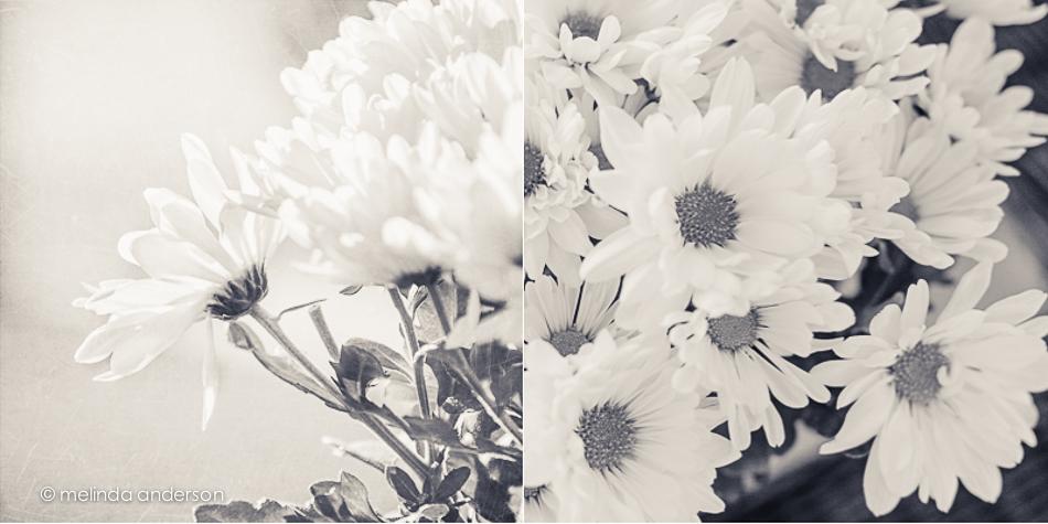 flower_square-3