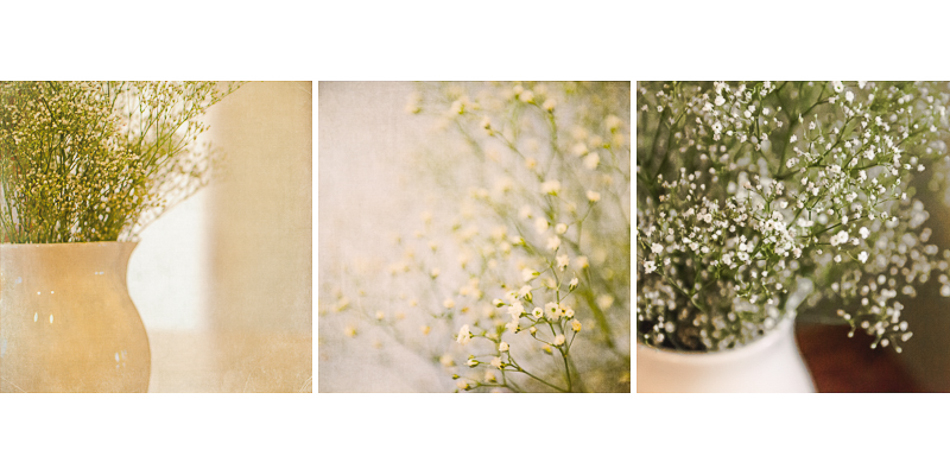baby's breath layout