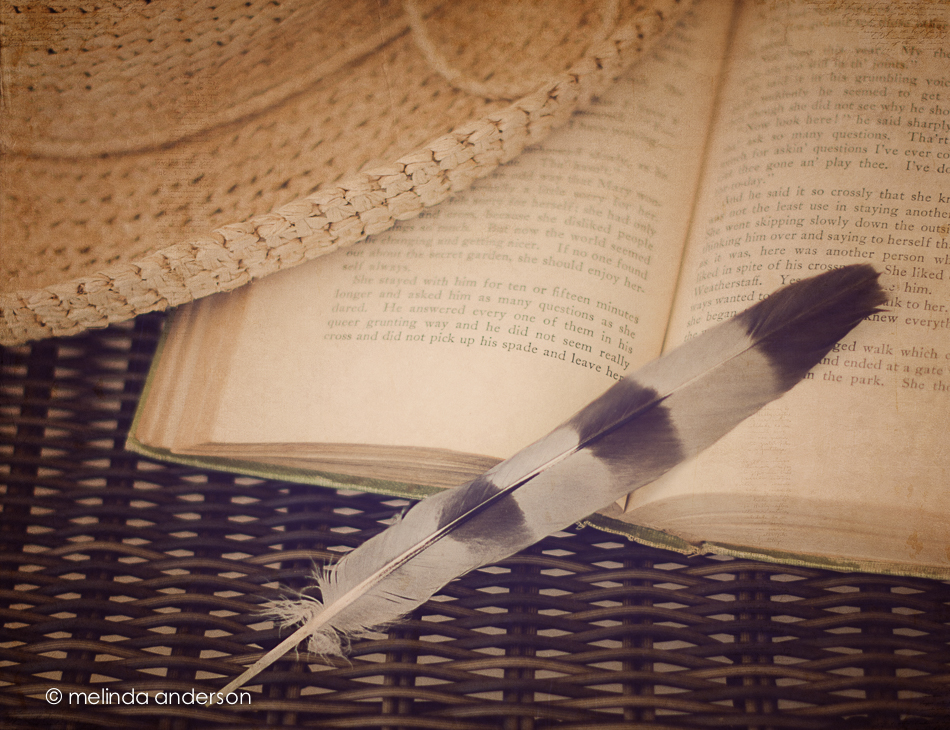 20140630-DSC_0634_melinda_anderson-Edit