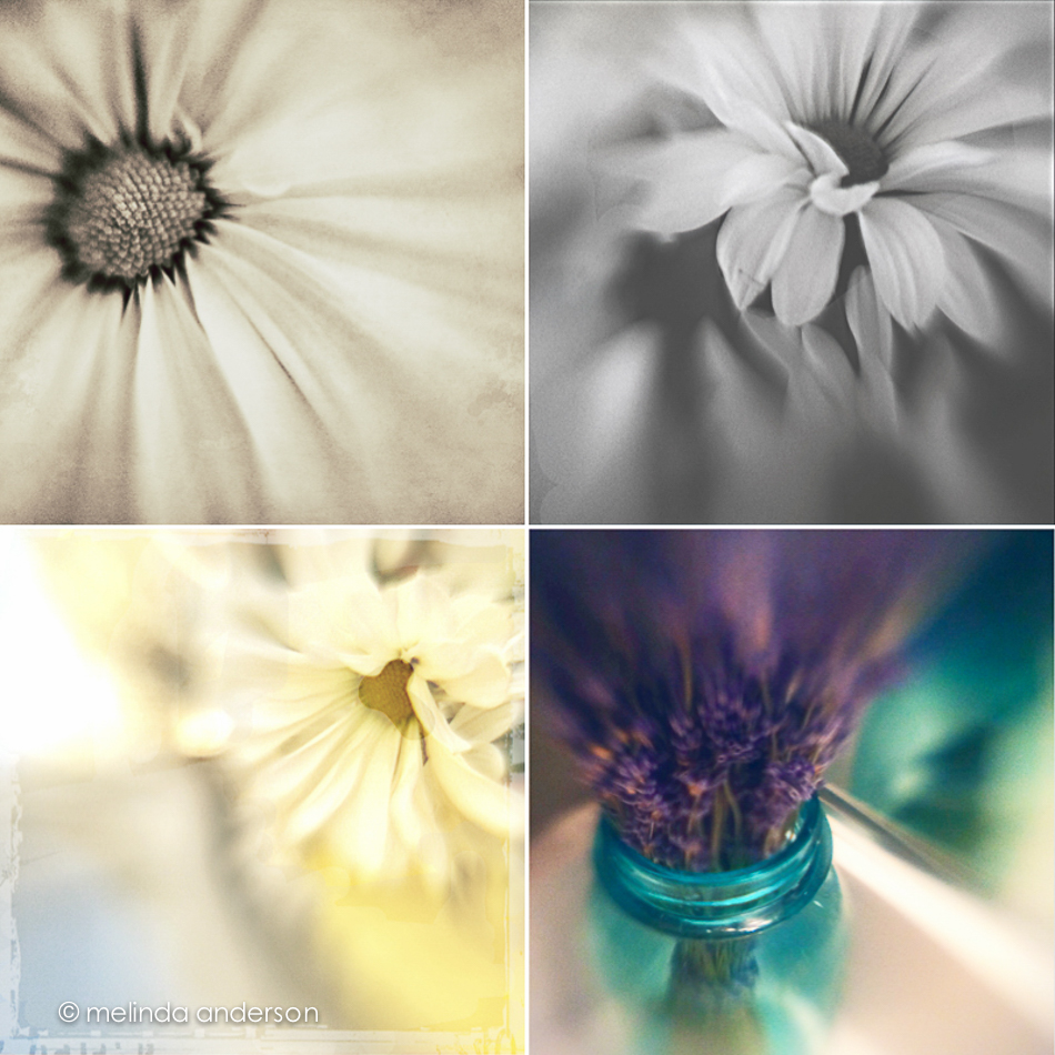 lensbaby_layout