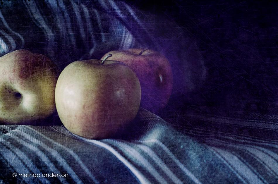 20141025-DSC_6187_melinda_anderson-Edit