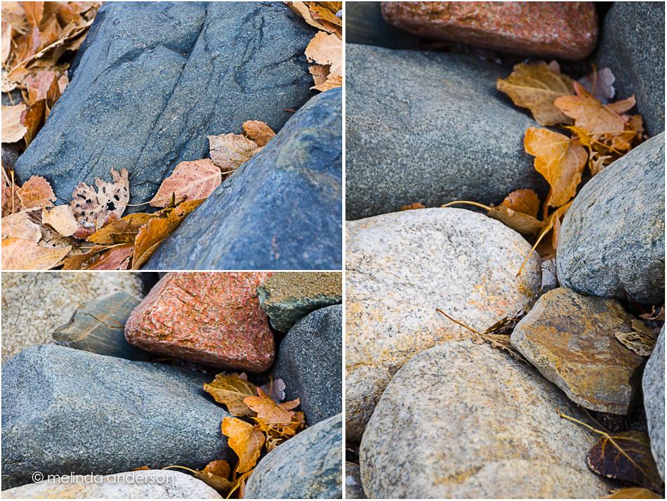 20141115-captured-2_melinda_anderson