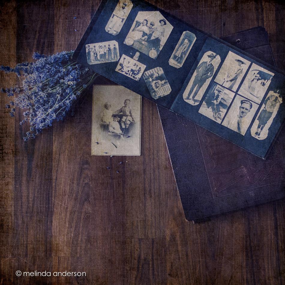 20141129-DSC_7307_melinda_anderson-Edit