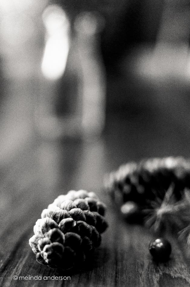 20141130-DSC_7327_melinda_anderson-Edit