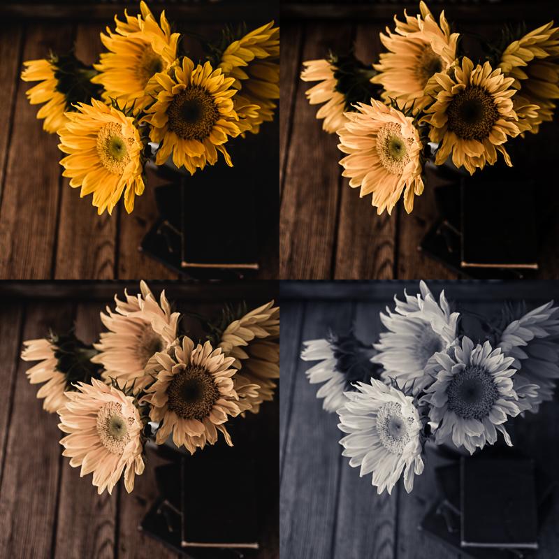 sunflowerpresets