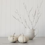 whitepumpkins-