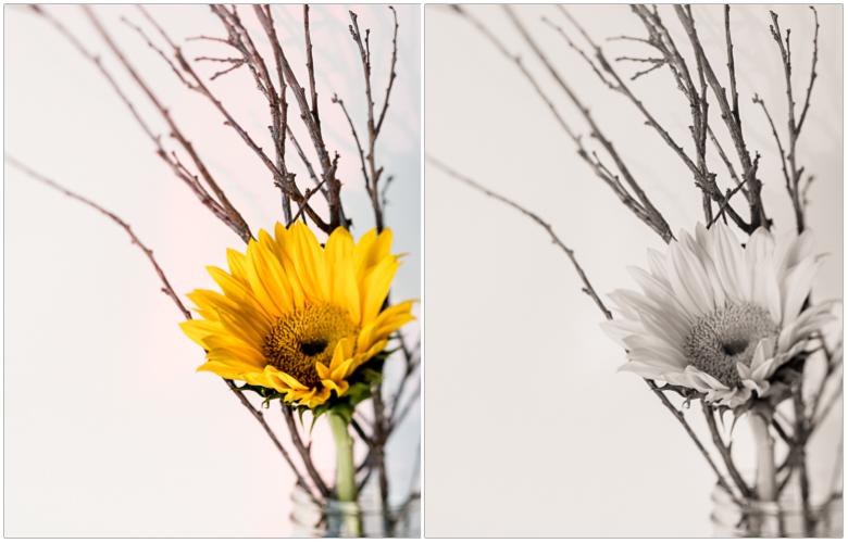 flowersticks