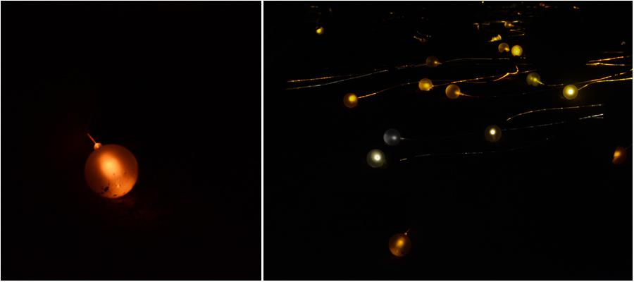phx_hill_lights_diptych