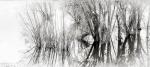 20170122-mma_1963_melinda_anderson-edit