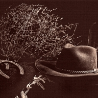 Cowboy Still Life