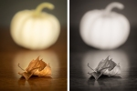 October diptych