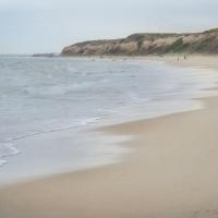 Beach Bareness
