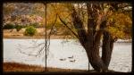 Watson Lake Triptych-