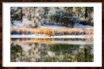winter reflected unframed-2
