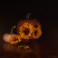 October Still Life